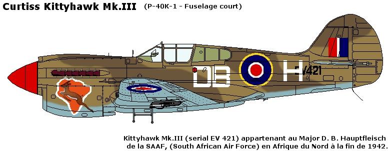 Besoin d'aides pour profils d'avions diverses. Curtis12