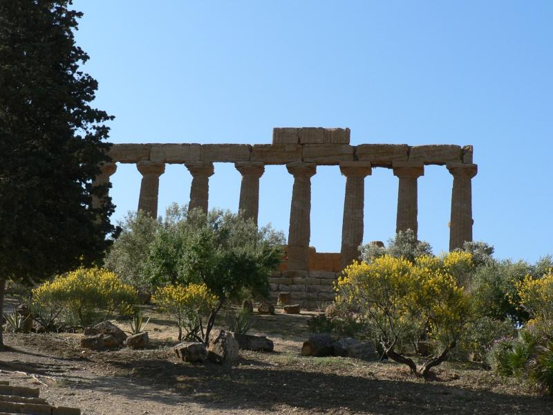 Antiquités romaines sous l'oeil de Google Earth P1010511