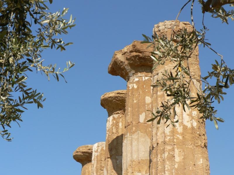 Antiquités romaines sous l'oeil de Google Earth P1010516