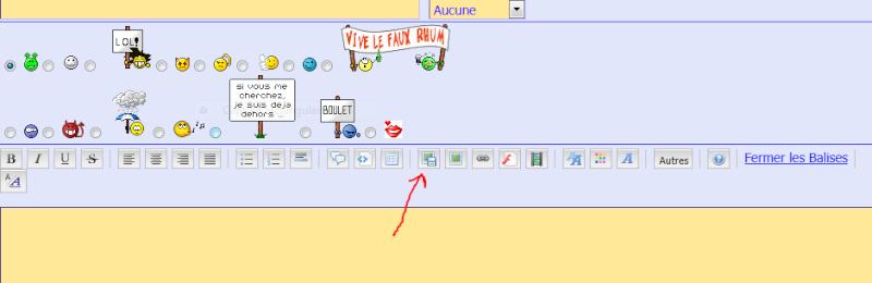 pour insérer une image sur le forum Captur11