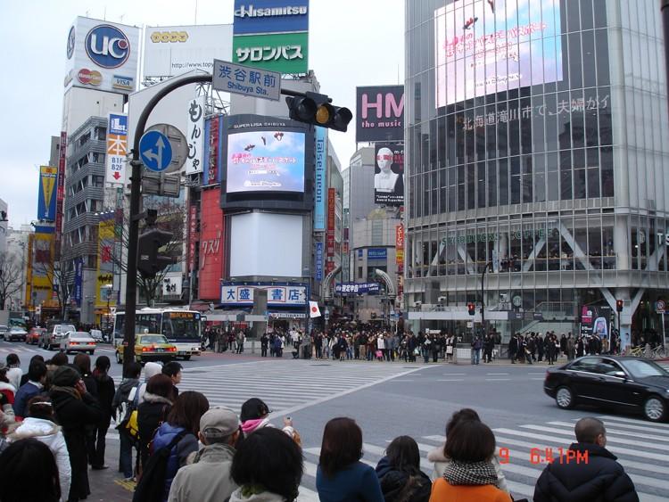 Retour du Japon - Page 2 Dsc00510