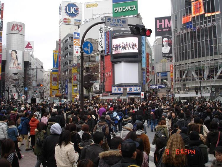 Retour du Japon - Page 2 Dsc00511