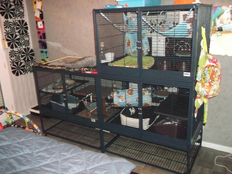 Conseils pour une cage faite maison en aluminium Dscf4510