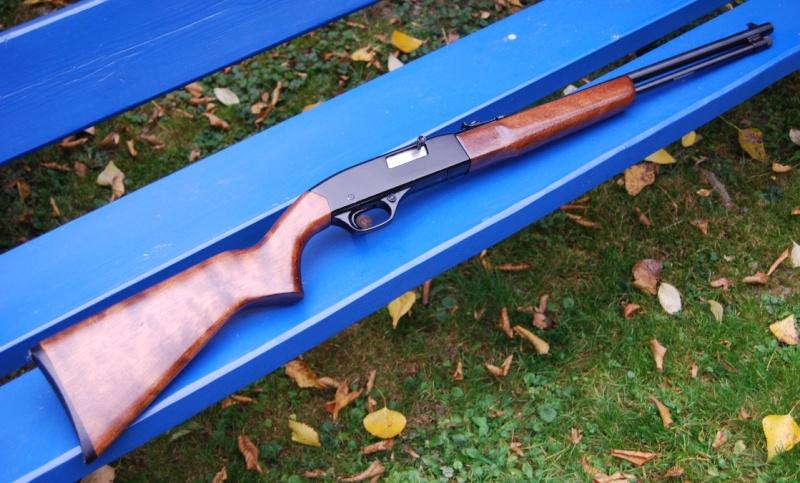 Demande d'info sur Winchester 190 - Page 2 Dsc_0126