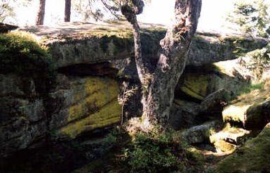 <@¿@> du 13 Avril : mur païen du Mont Ste Odile M3a10