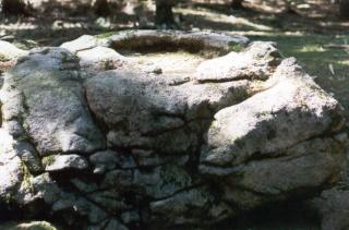 <@¿@> du 13 Avril : mur païen du Mont Ste Odile M3g_110