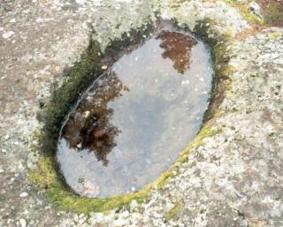 <@¿@> du 13 Avril : mur païen du Mont Ste Odile M3t_210