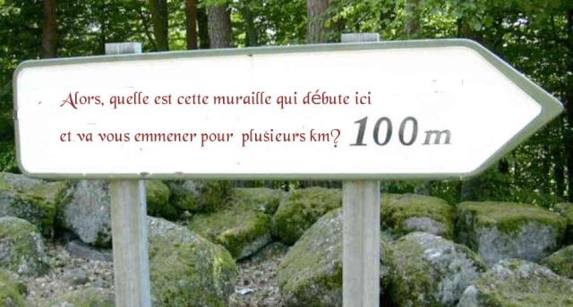 <@¿@> du 13 Avril : mur païen du Mont Ste Odile M410