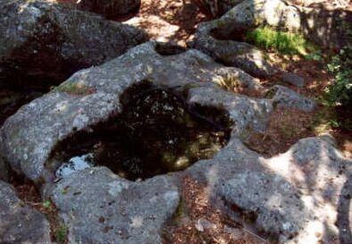 <@¿@> du 13 Avril : mur païen du Mont Ste Odile M4ajpg10