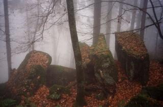 <@¿@> du 13 Avril : mur païen du Mont Ste Odile M4s10