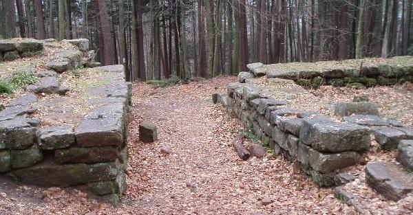 <@¿@> du 13 Avril : mur païen du Mont Ste Odile M610
