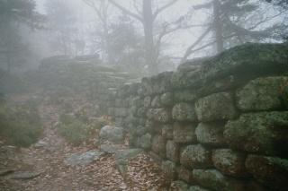 <@¿@> du 13 Avril : mur païen du Mont Ste Odile M811