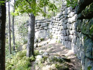 <@¿@> du 13 Avril : mur païen du Mont Ste Odile M8g111
