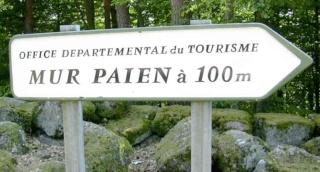 <@¿@> du 13 Avril : mur païen du Mont Ste Odile Pannea11