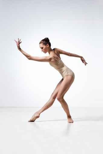 Image en vrac de classique Danse110
