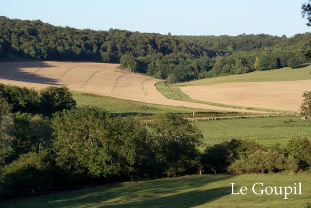 Mes sorties Chasse à l'approche - Saison 2011 / 2012 - Page 5 Dsc05512