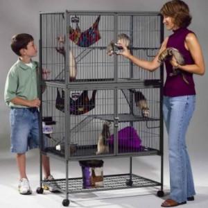 A vendre cage Nation 2 Cage-f12