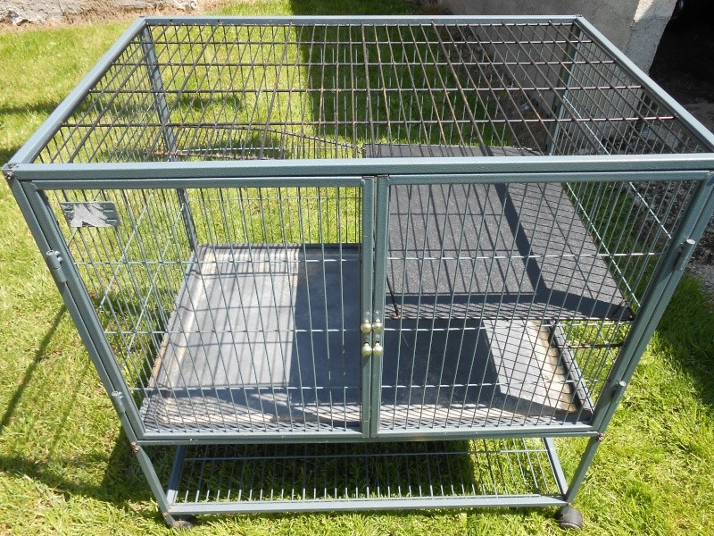 A vendre cage Nation 2 Dscn0115