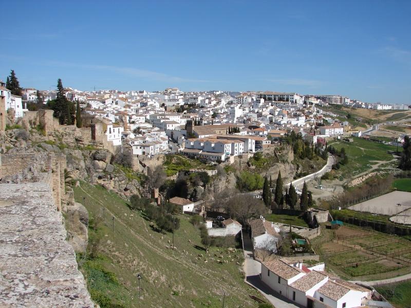 L'Andalousie Dsc03830