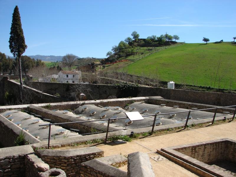 L'Andalousie Dsc03831