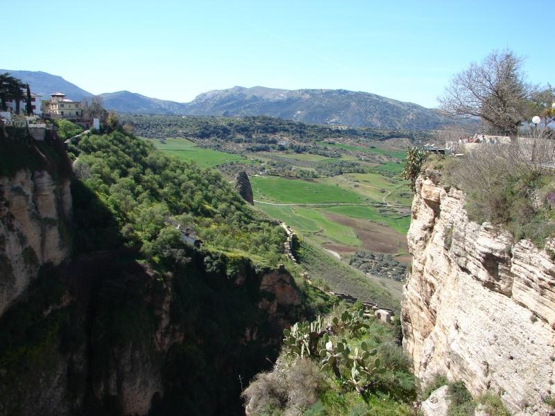L'Andalousie Dsc03916