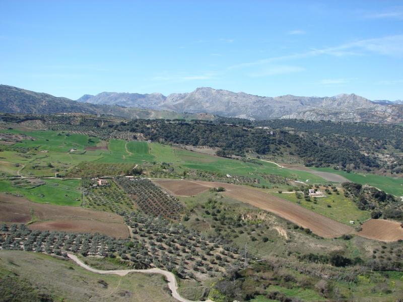 L'Andalousie Dsc03917