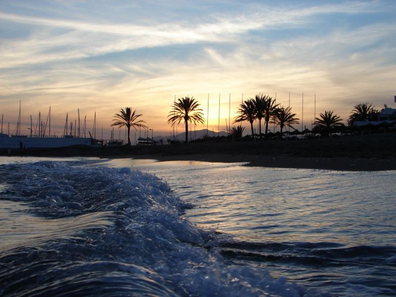 L'Andalousie Dsc03923