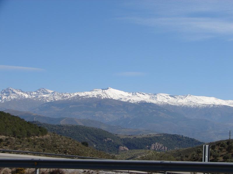 L'Andalousie Dsc04318