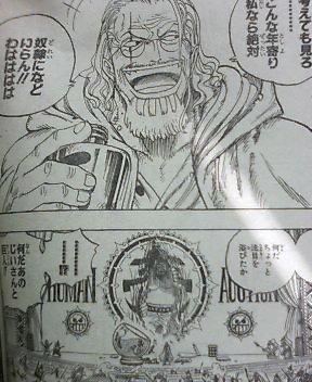 One Piece 503 1013