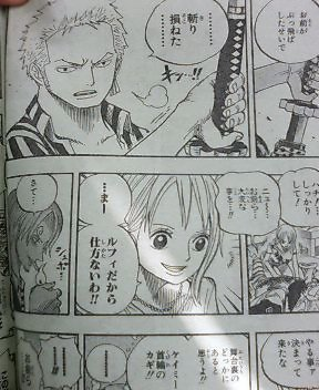One Piece 503 520