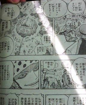 One Piece 503 817