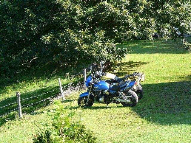 [CR] Balade le long des Pyrénées P1200110