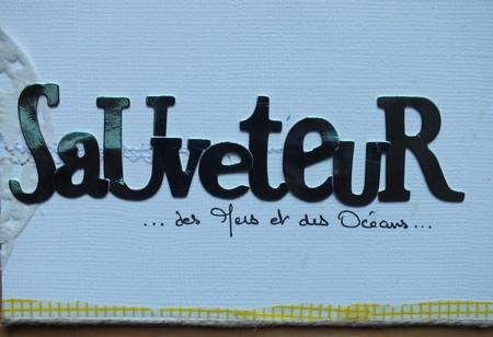 Galerie Nadine49 (couverture album, 8 pages et 8 photos) Sauvet11