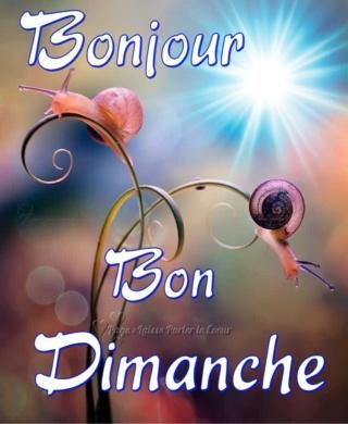 DIMANCHE 24 MARS 2019 Dimanc22