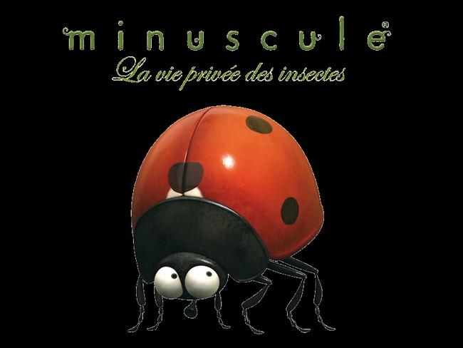 MINUSCULE, LE FILM - Studio Futurikon - 29 janvier 2014 Minusc10