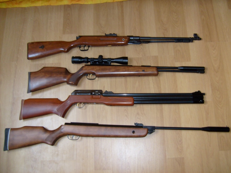 Mes armes longues S6300110
