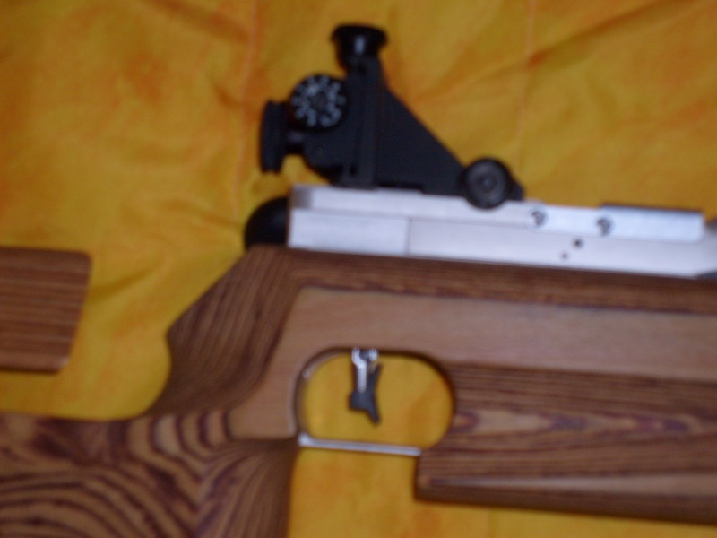 Mes armes longues - Page 2 S6300316