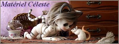 """Concours de bannières n.23: """"Petites bêtes"""" - Page 6 P1030655"""