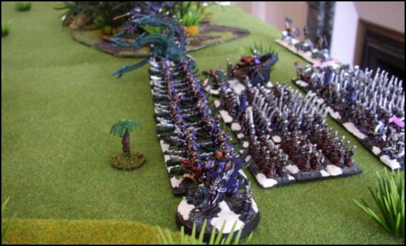 Elfes Noirs vs Hommes-Lézards - 3000/1500 points 20080511