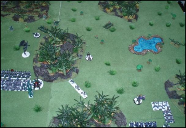 Elfes Noirs vs Hommes-Lézards - 3000/1500 points 20080519