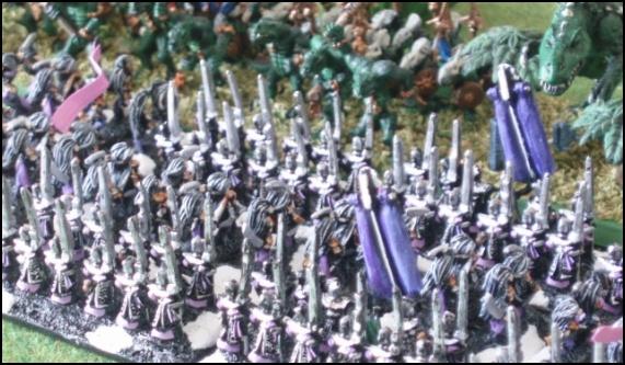 Elfes Noirs vs Hommes-Lézards - 3000/1500 points 20080522