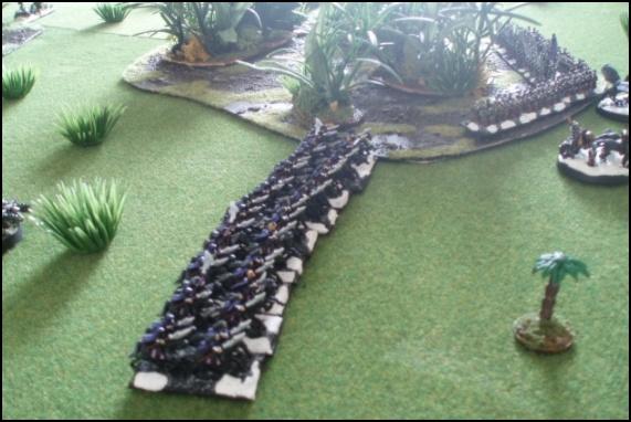Elfes Noirs vs Hommes-Lézards - 3000/1500 points 20080524