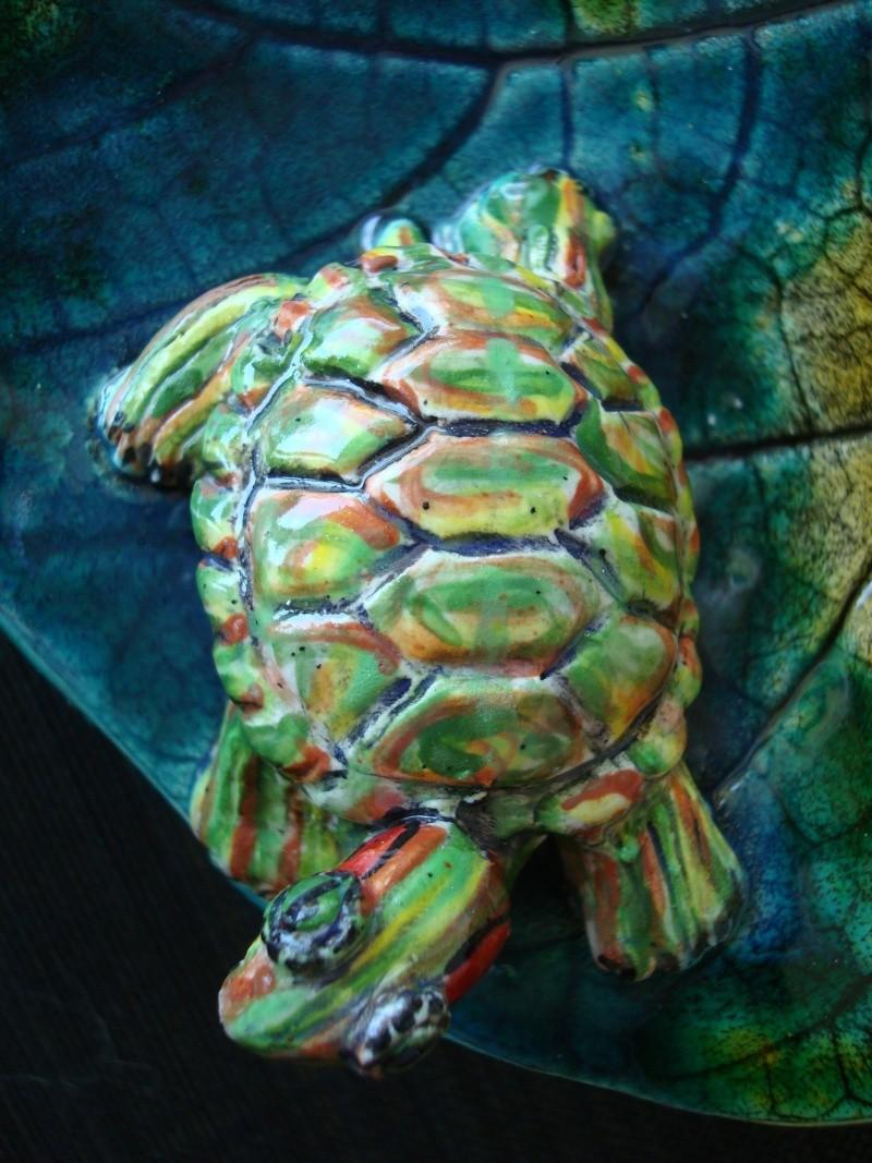 """Coupe """"feuille avec tortue de Floride"""" Dsc09035"""