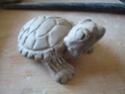 """Coupe """"feuille avec tortue de Floride"""" Dsc08732"""