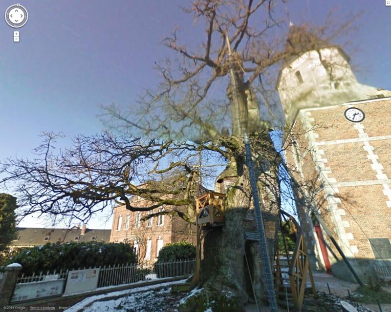 STREET VIEW : les arbres remarquables en France Allouv10