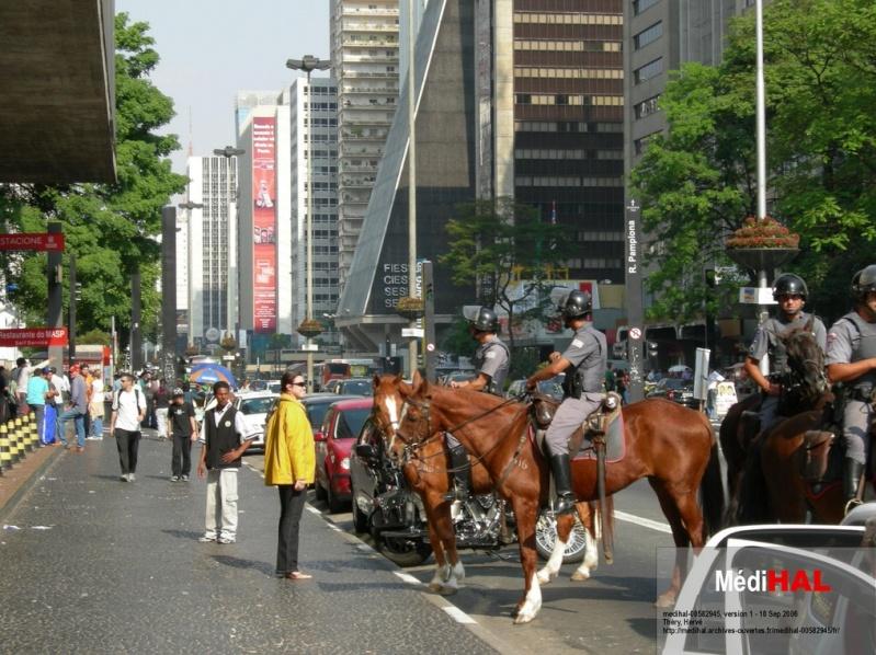 STREET VIEW : véhicules de police du monde - Page 7 Pm10