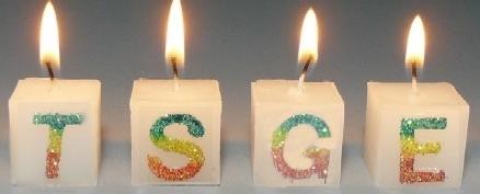 Les 6 ans de TSGE. Joyeux anniversaire - Page 3 Tsge10