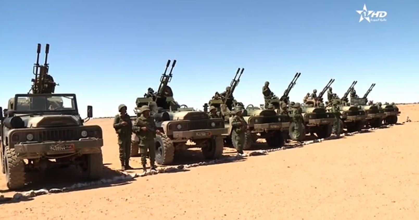 Divers véhicules de l'infanterie motorisés  2010