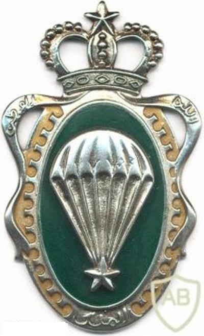 Unités, Grades et insignes dans les FAR / Moroccan Units and Ranks - Page 5 Clipb102