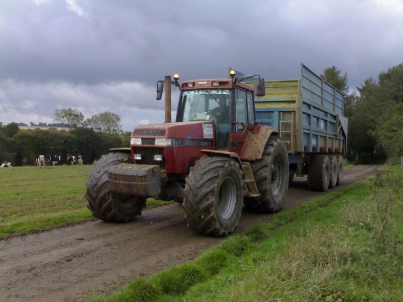 Ensilage de maïs 10102010